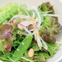 岐阜のカフェ、Hidamari cafe(ひだまりカフェ)のサラダ写真